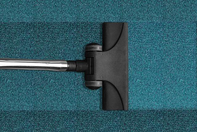 vyčištěný koberec